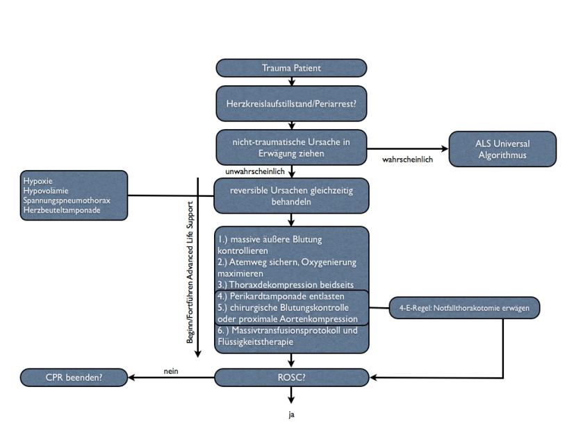 ERC-Algorithmus Trauma Patient